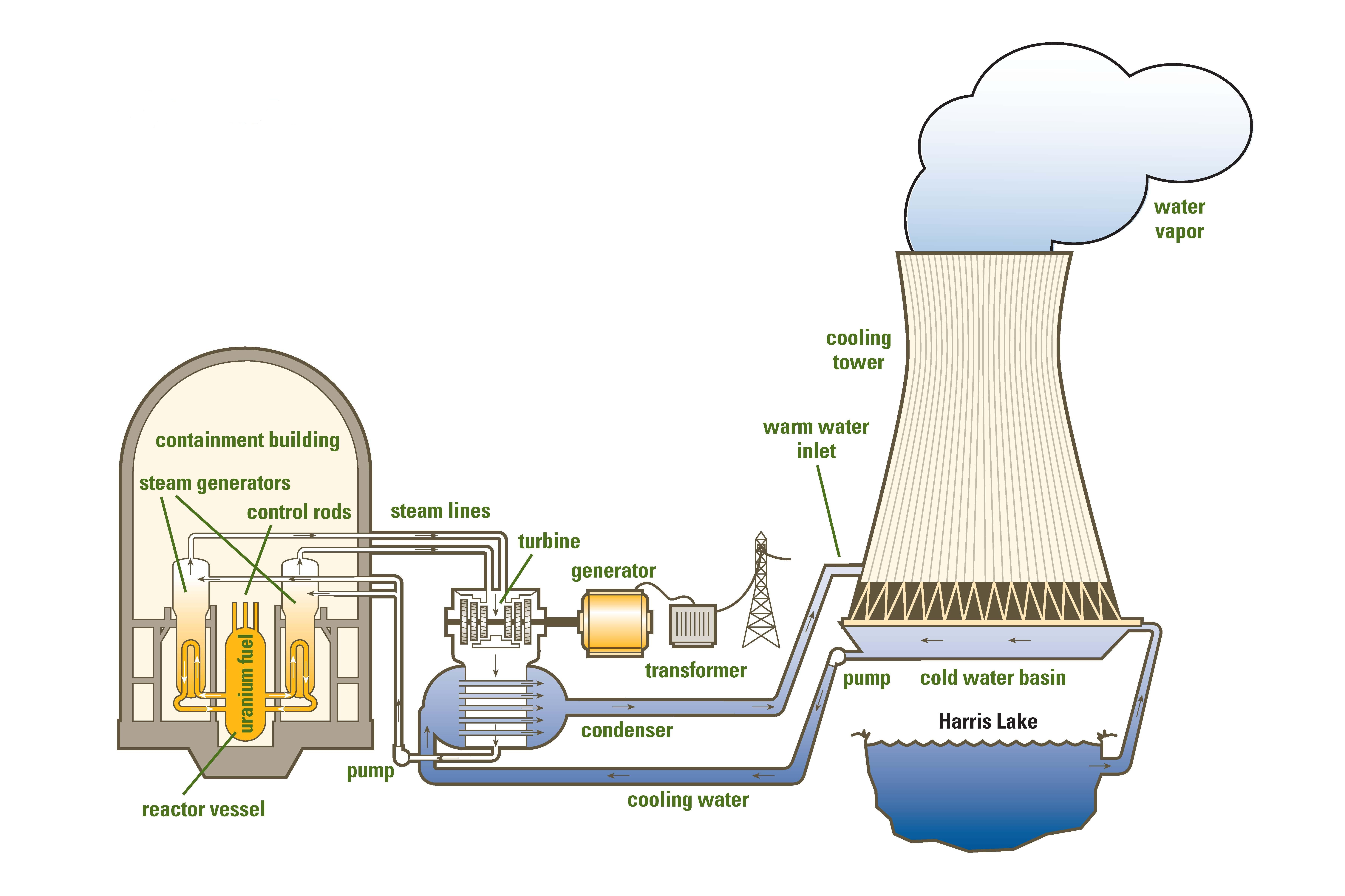 a look at how a nuclear reactor works and its components