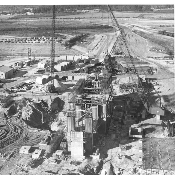 Plant Construction 4