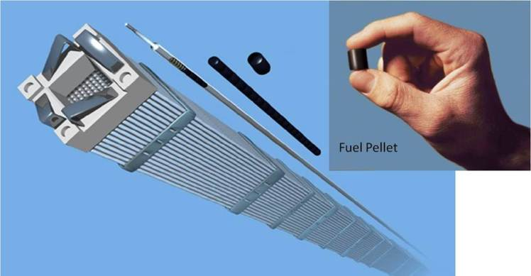 Nuclear Fuel Pellet Assembly