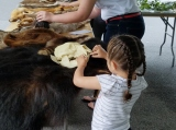 Mountain Island Educational State Forest educators brought animal pelts and skulls for students to study.
